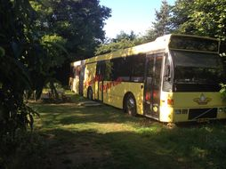 Freedom Bed & Breakfast Bus in Sevenum, Limburg - Nederland